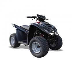 Quadzilla QZR 80 OFF ROAD KIDS QUAD