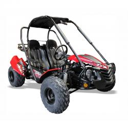 Quadzilla CHEETAH 150 Large Junior Off Road Buggy