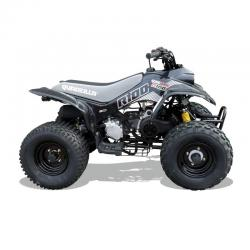 R100 - quads for kids from quadzilla