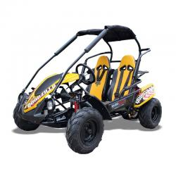 Quadzilla WOLF XL Mid Size Junior Off Road Buggy